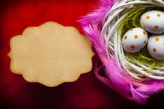 Three painted Easter eggs in the nest and blank paper card royalty free stock photography