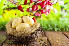 Three painted Easter eggs in the nest on table and nature background. Three painted Easter eggs in the nest on old wooden table and nature background stock photography