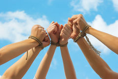 Three pairs of human hands tied up together Stock Photos