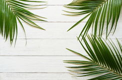 Free Three Palm Branches On A White Wooden Background. Royalty Free Stock Image - 98615786
