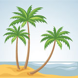 Three palm trees in vector Royalty Free Stock Images