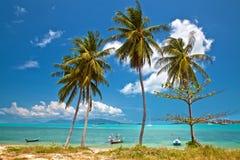 Three palms. Sea, palm trees and fishing boats Royalty Free Stock Image