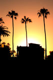 Three palms and a beachhouse at sunset Stock Images