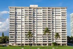 Three Palms at Condo Tower stock photo