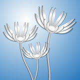 Three paper camomiles Stock Images