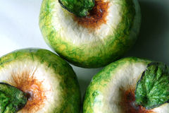 Three Papier Mache Apples (macro) Royalty Free Stock Images