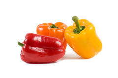 Three paprika peppers isolated on white. Red, orange and yellow peppers isolated on white background Stock Image