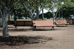 Three park bench seats in outdoors park Royalty Free Stock Images