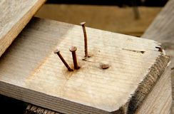 Three in part driven-in bended rusty nails and one in full driven-in nail in wooden plank. Three in part driven-in bended rusty nails and one in full driven-in stock photos