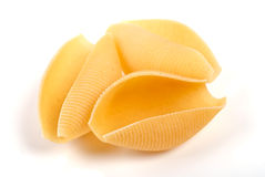 Three pasta shells on white Royalty Free Stock Images