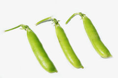 Three pea pods Royalty Free Stock Photography