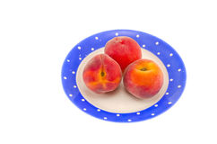 Three peach in blue plate isolated on white Stock Images