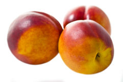Three peaches. Three fresh and juicy peaches isolated on a white background royalty free stock photography