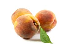Three peaches with leaf Royalty Free Stock Photo