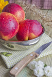 Three peaches on the table. Still life of three peaches on the table Stock Photography