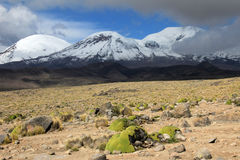 The three peaks of volcano coropuna in the andean mountains Peru Stock Photo