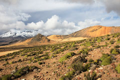 The three peaks of volcano coropuna in the andean mountains Peru Royalty Free Stock Photo