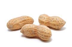 Three Peanuts. On White Royalty Free Stock Photography