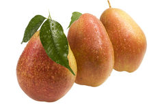 Three Pear with drops of dew on a white Royalty Free Stock Photos