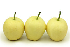 Three  Pears Stock Images