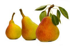 Free Three Pears Royalty Free Stock Images - 2895779