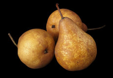 Three pears isolated Royalty Free Stock Image
