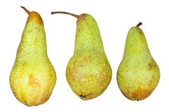 Three pears isolated on white Royalty Free Stock Photography