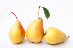 Three pears isolated on white background Royalty Free Stock Images
