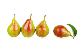 Three pears are in a row one lies with leaf Stock Photography