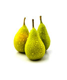Three Pears Standing on a White Background. Studio shot of three pears on a white background Royalty Free Stock Photo