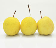Three Pears. On the white background Royalty Free Stock Image