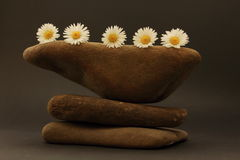 Three pebbles superimposed on each other. Decoration with stones, flowers and feather Stock Photography