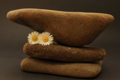 Three pebbles superimposed on each other. Decoration with stones, flowers and feather Royalty Free Stock Photo