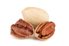 Three pecan nuts isolated on white background royalty free stock photography