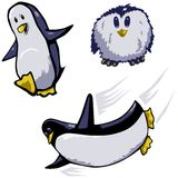 Three penguin cartoons Royalty Free Stock Photos