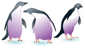 Three penguins Royalty Free Stock Photo