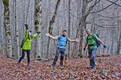 Three people in a forest throwing leaves. Ordesa, Huesca, Spain Stock Photography