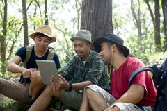 Three people using tablet pc together. In the forest Stock Photography