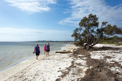 Three people walking along a sheltered estuary with dogs. Mature women and couple walking along a sheltered estuary with Labrador and Shitzu dogs under a partly stock images