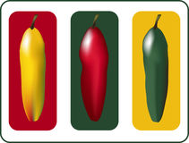 Three Peppers. Yellow, red, and green hot peppers in a three section layout.  The Three Peppers vector design uses a gradient mesh,is in easy edit layers, and is Royalty Free Stock Image