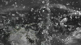 Three peppers falling into water in negative colour stock footage
