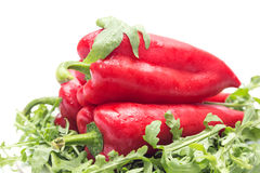 Three peppers Stock Image