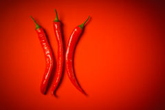 Three peppers on a red background Royalty Free Stock Image