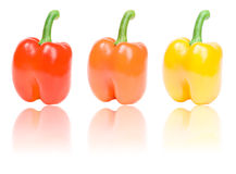 Three peppers with reflection isolated on white Royalty Free Stock Photo