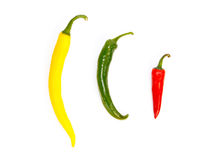 Three peppers in a row in different colors stock photography