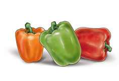 Three peppers on white. Three colorful peppers with water drops  on a white background. High resolution of the digital illustration for creating your beautiful Royalty Free Stock Images