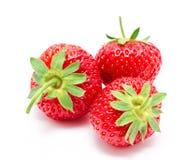 Three perfect red ripe strawberry  Stock Image