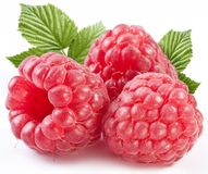 Three perfect ripe raspberries with leaves. Isolated on a white background royalty free stock photos