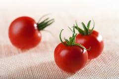 Three perfect tomatoes on hessian backdrop Royalty Free Stock Photo