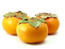 Three persimmons. Three orange persimmons, very round and glossy, on white Royalty Free Stock Photo